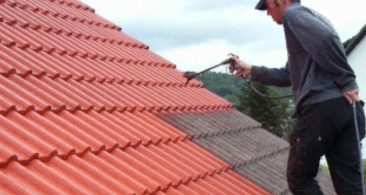 Roof Painting Laois Roofing